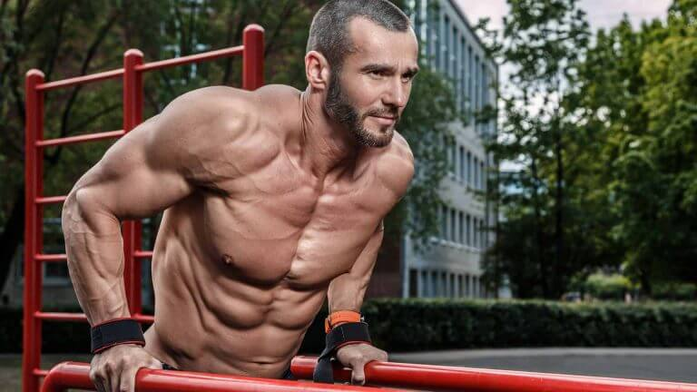 which muscles do dips work