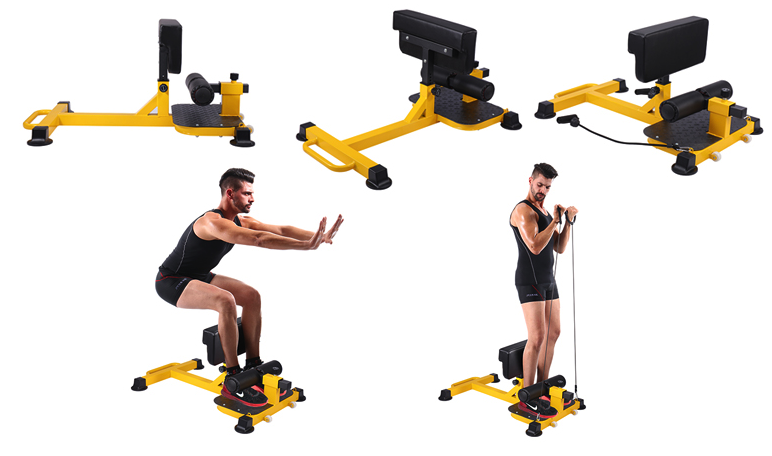 best sissy squat machines