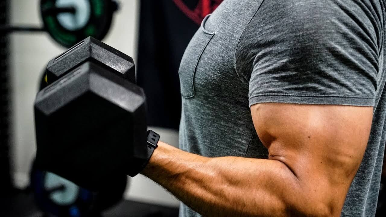 what muscles are used in arm wrestling