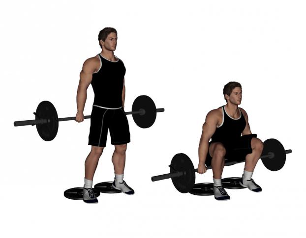 hack squat alternative - the barbell hack squat