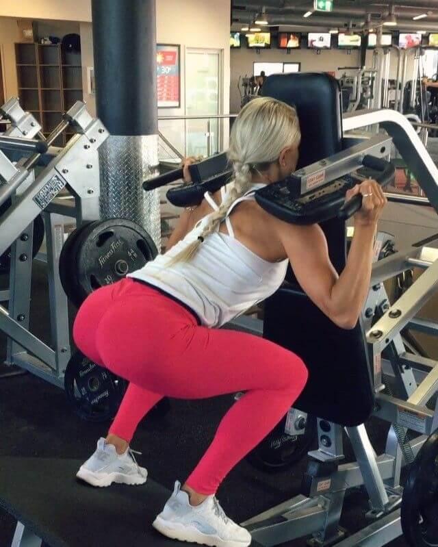 reverse hack squat