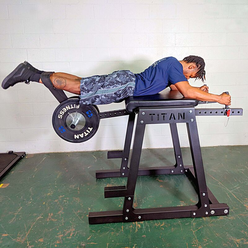 titan fitness reverse hyper extension machines