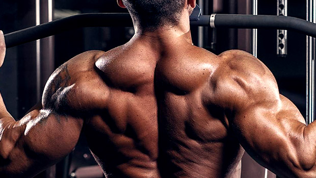 should i workout my back muscles after chest day?
