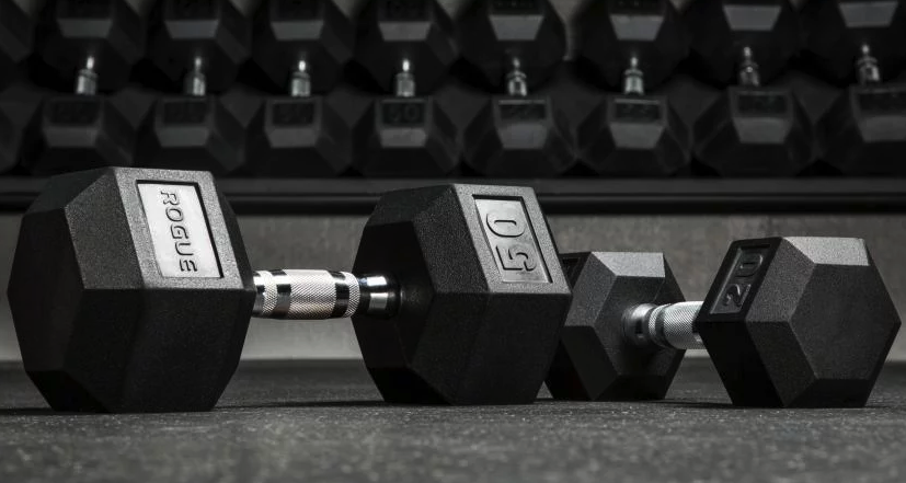 best dumbbells to buy at rogue fitness