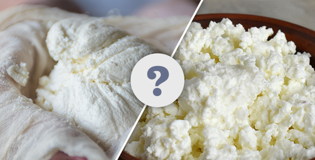 ricotta cheese vs cottage cheese