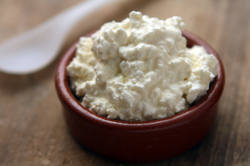 what is cottage cheese and what does it look like
