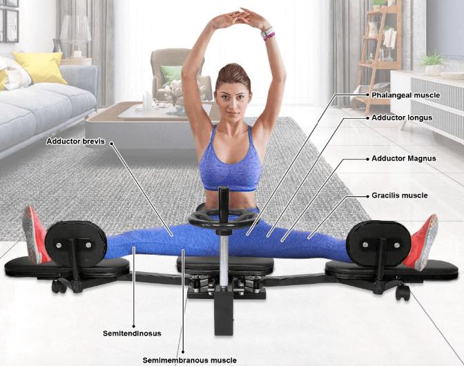 leg stretcher machine muscles worked