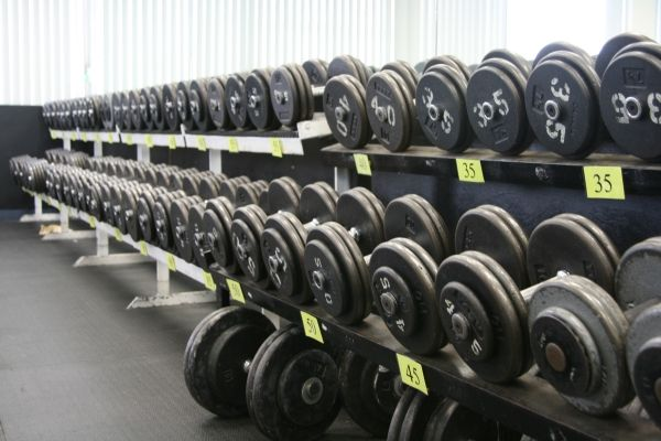 BodyBuilding Buyers Guide to Buying the Best Home Gym - Free Weights