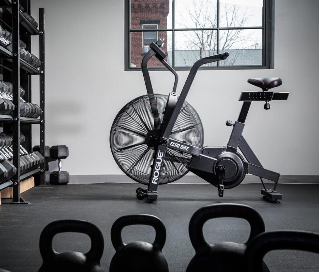 rogue echo air bike review