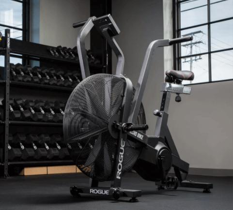 rogue echo air bike reviews