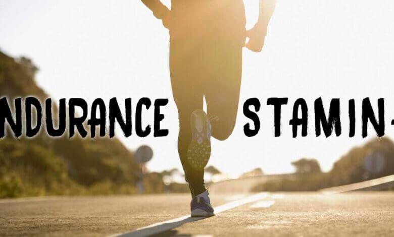 stamina vs endurance