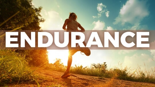 what is endurance