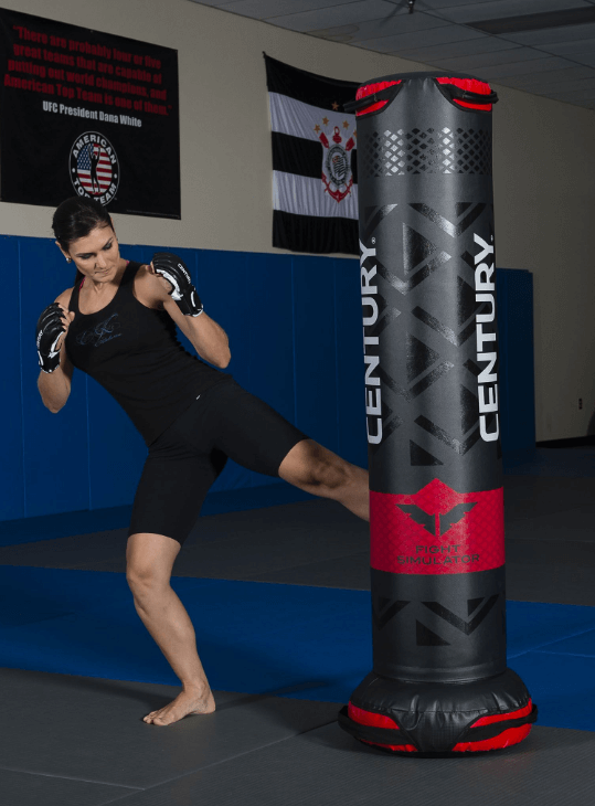 Century Versys Fight Simulator - The Best Bang for Your Buck - Best punching Bags for an Apartment
