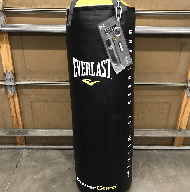 Everlast Nevatear 80lb - Best Hanging Heavy Bags for Teenagers