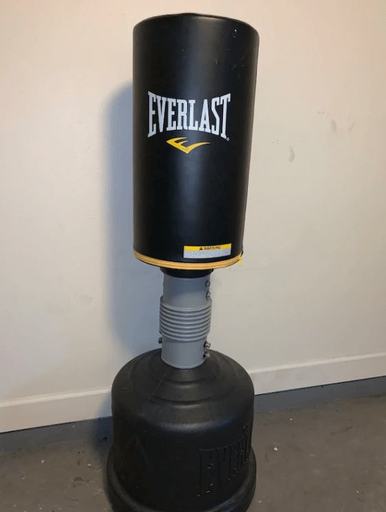 Everlast Powercore - Best Free Standing Punching Bags for Teenagers