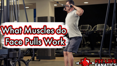 Photo of What Muscles do Face Pulls Work?