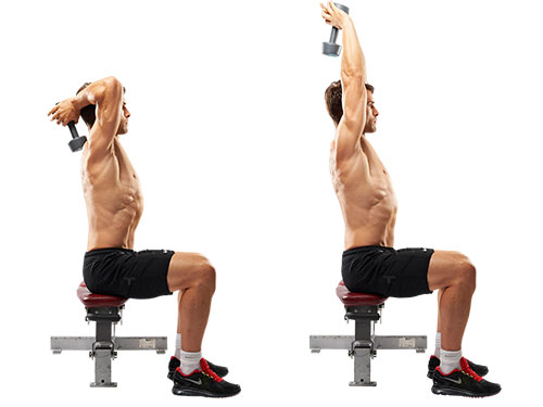 seated tricep press exercise
