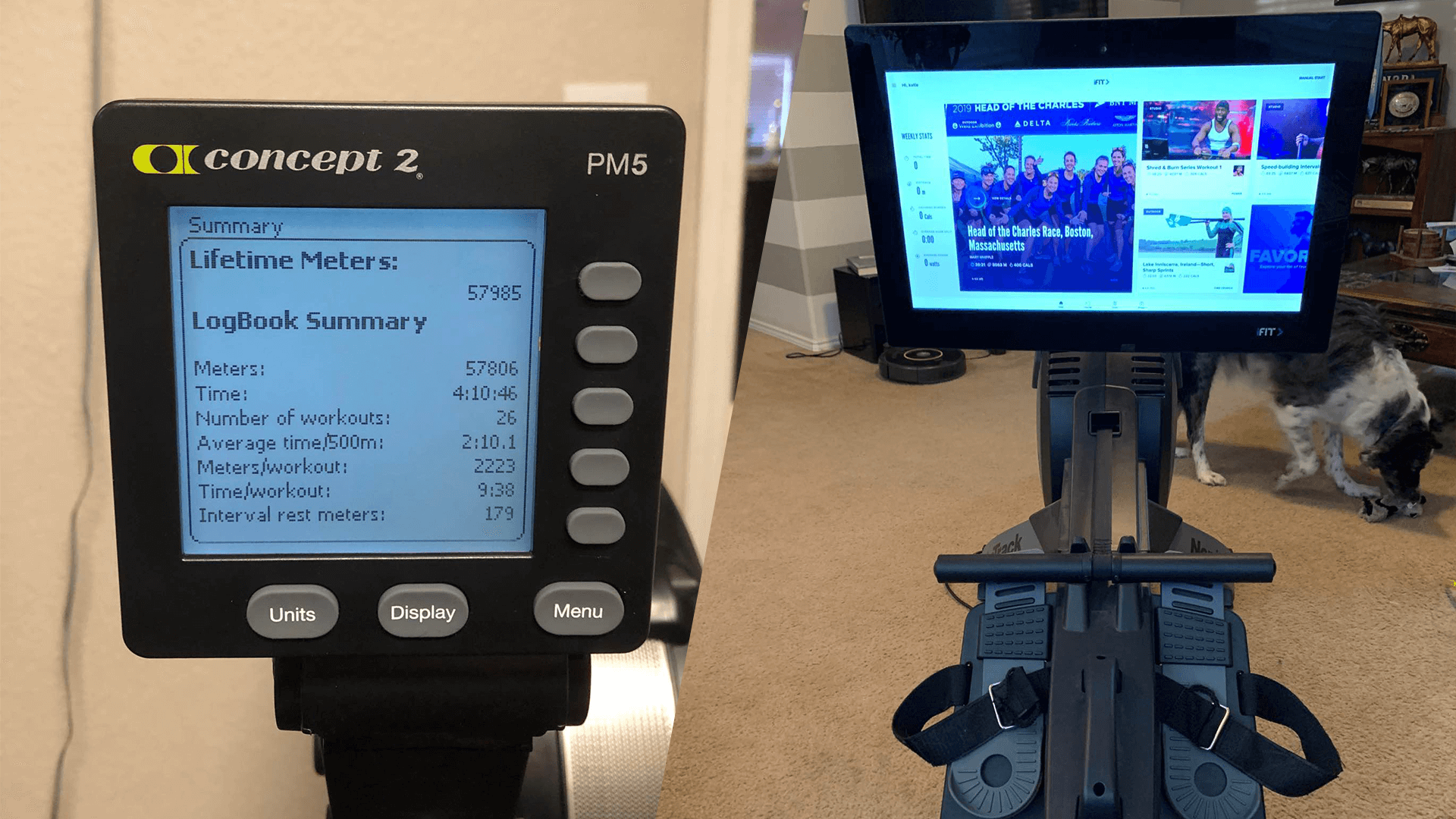 Comparing the NordicTrack RW900 the Concept 2 Model D when it comes to workout programs for each