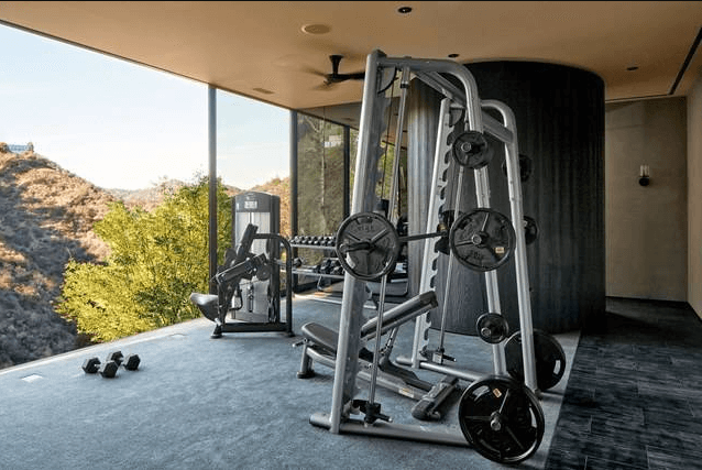 comparing Full-Body Home gyms to other exercise equipment