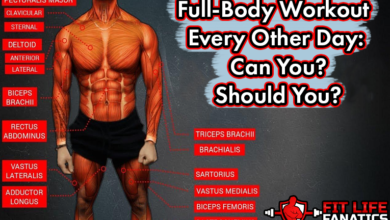 Photo of Full-Body Workout Every Other Day: Can You? Should You?