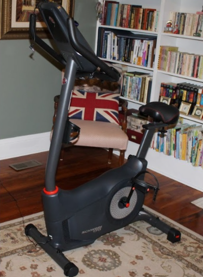 the Schwinn 170 Upright Bike is our choice for the best Upright Exercise Bike