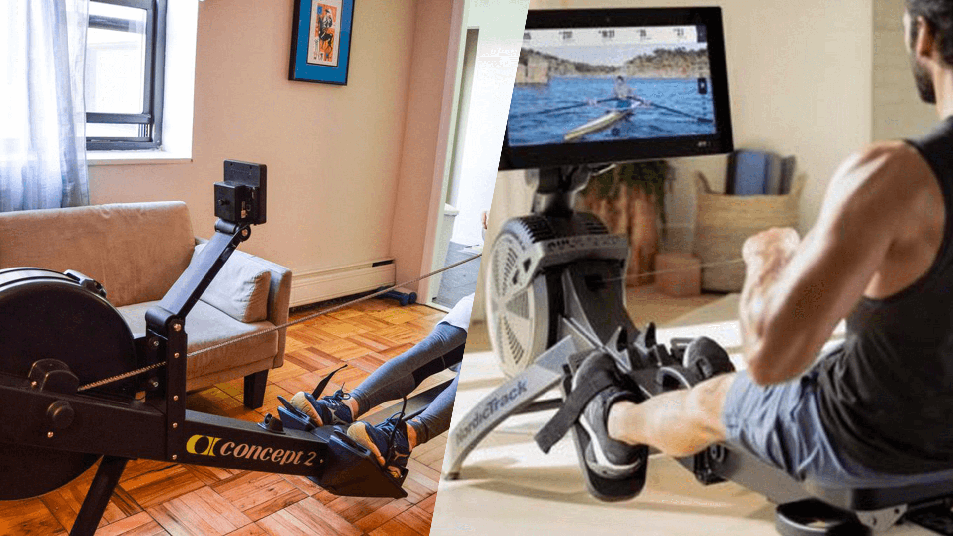 Comparing the NordicTrack RW900 and the Concept 2 Model D in terms of which one offers more features