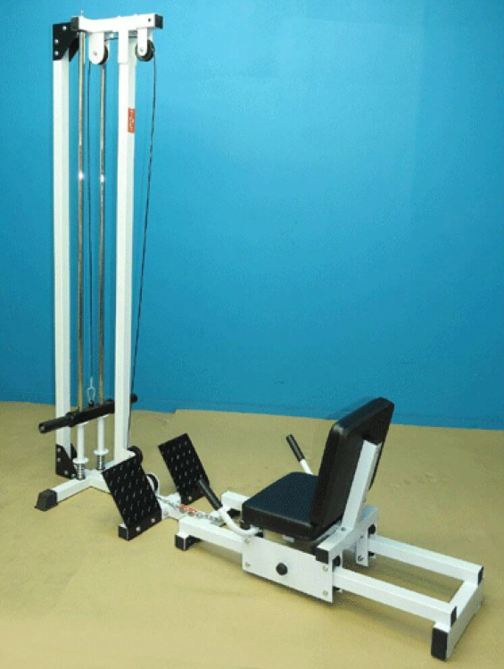 The TDS Horizontal Leg Press is the best cheap option you can get when shopping for a horizontal leg press machine