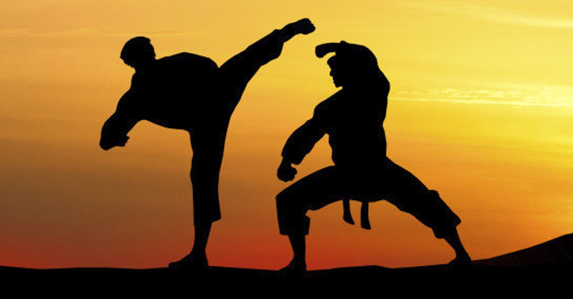 Is the one punch man workout good for martial artists