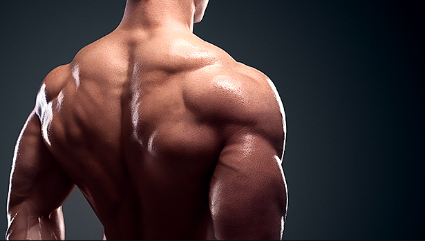 Get High Gains from the Low Row