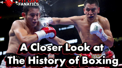 Into the Ring - A Closer Look at The History of Boxing - featured image