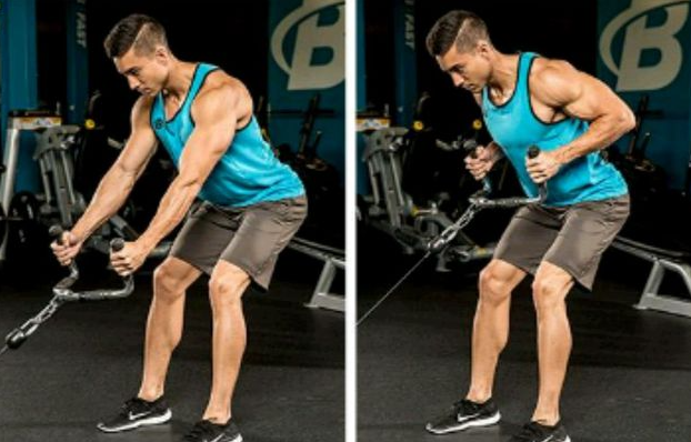 Standing Low Row is one of the alternatives to low rows