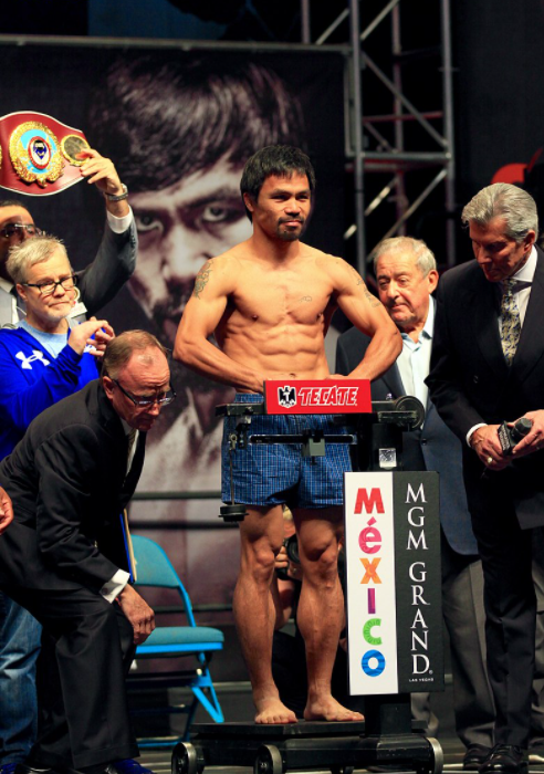 How are Weight Divisions determined in Professional Boxing