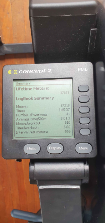 Which One Features The Best Workout Programs, Nordictrack RW200 or Concept 2 The Model D?