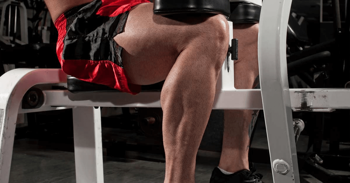 Great lower body Aesthetics is one of The Benefits that Seated Calf Raises Provide
