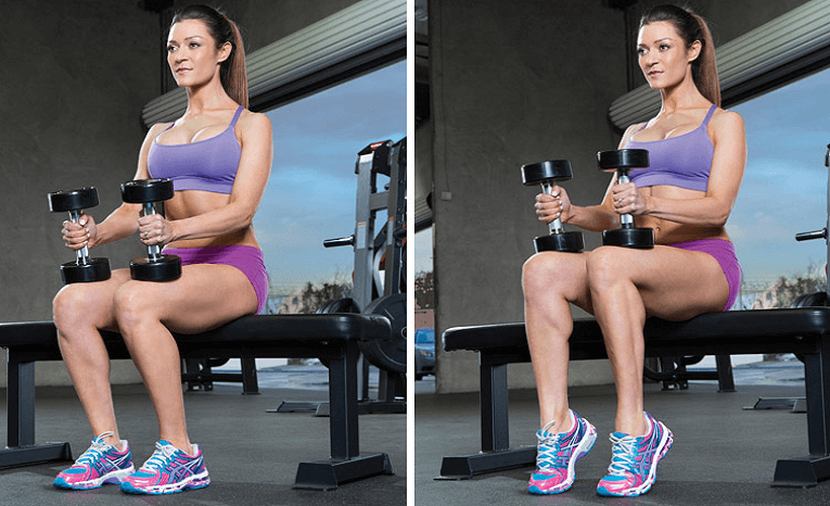 What Is a Seated Calf Raise