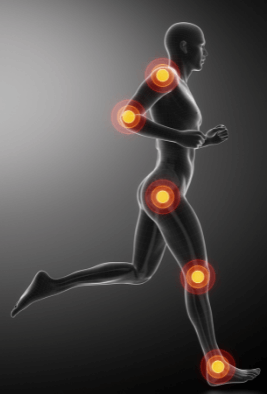 The impact forces of running are distributed along your body