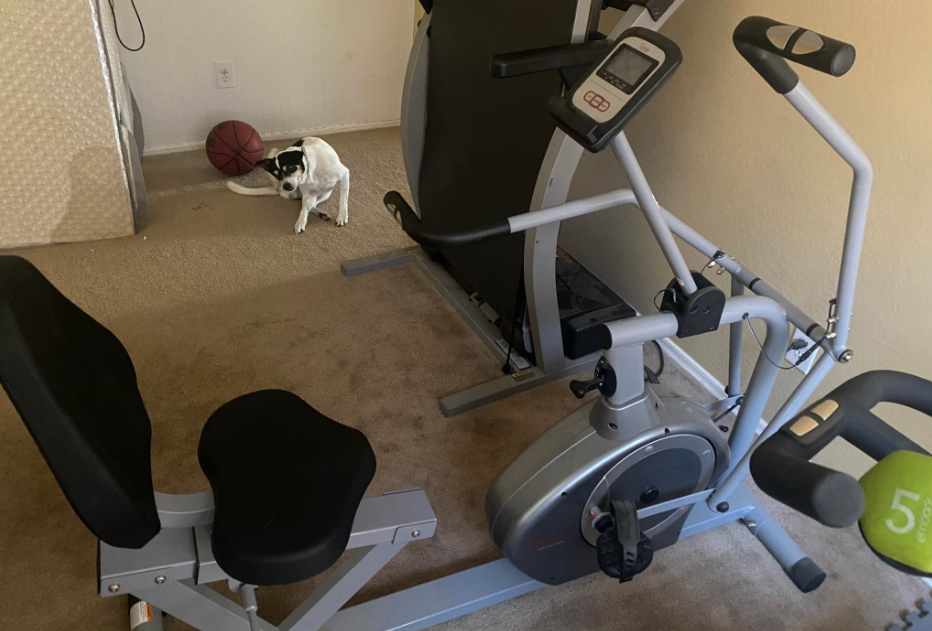 If you don't have much space on your side, get the Sunny health & fitness recumbent bike