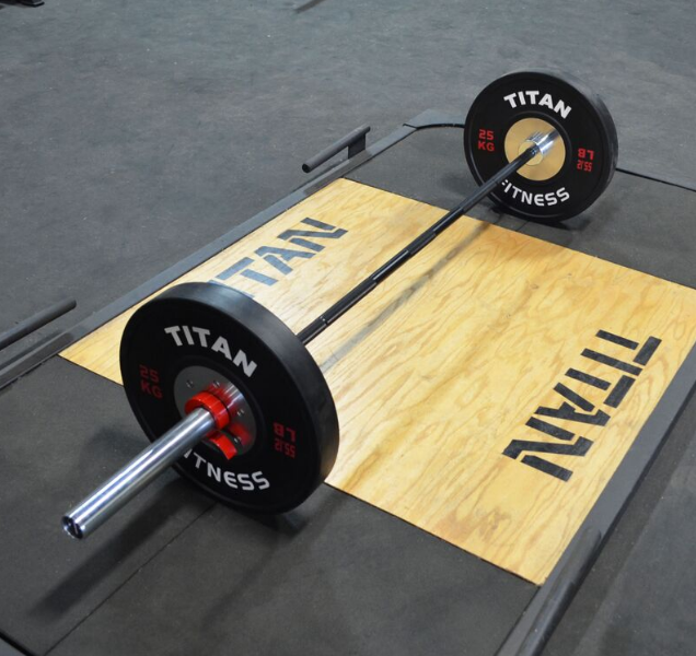Titan Fitness bar would make a great choice if you want the best bang for your buck