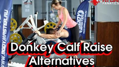 Donkey Calf Raise Alternative Exercises