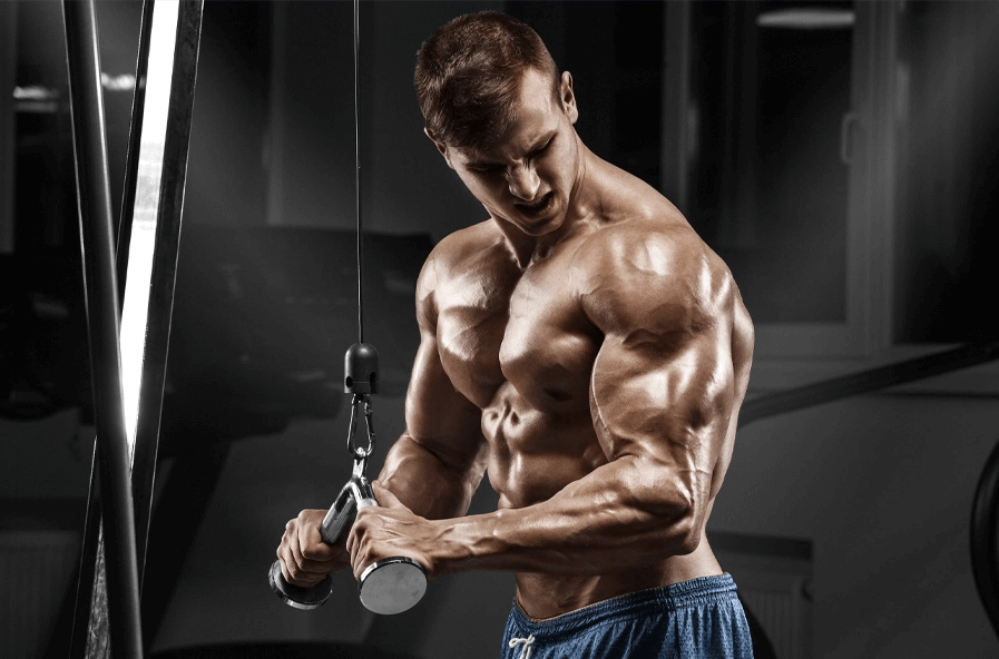 If your goal is to build muscle, you can use different workout programs