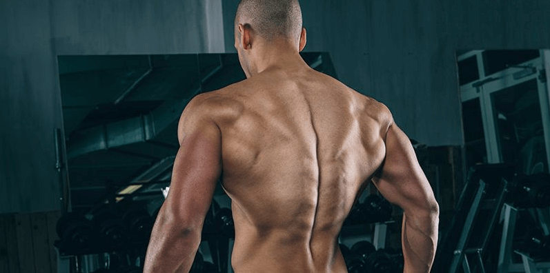 Jumping jacks work back muscles quite well too