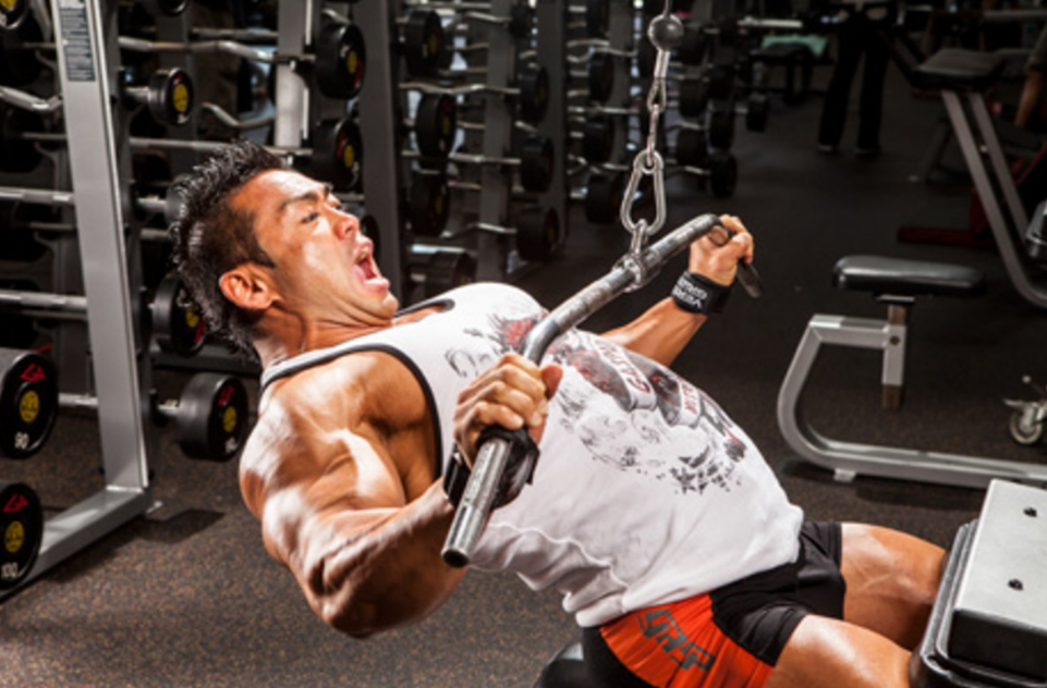 Lat Pulldown vs seated row which is better