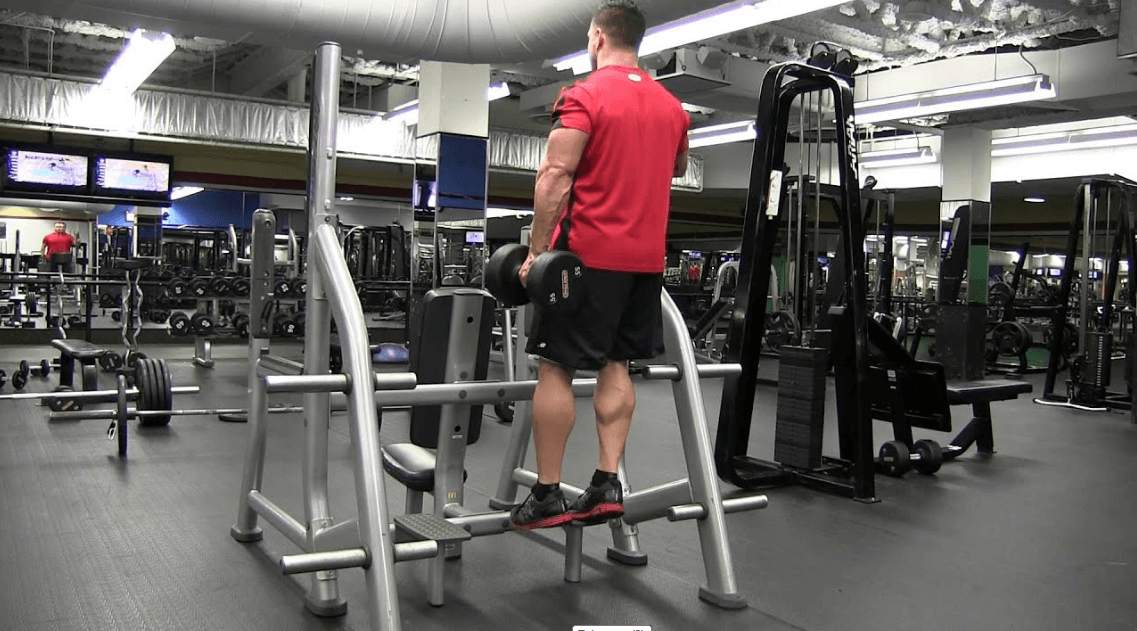Standing calf raise with dumbbells